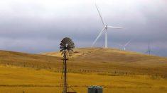 豪ビクトリア州で約1万世帯が停電、熱波で電力需要急増
