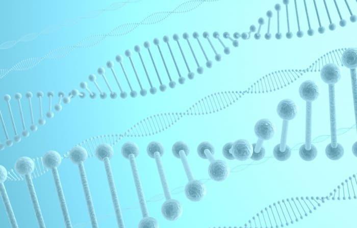DNAは環境汚染の影響を受ける カナダの研究