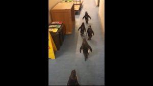 事務所の廊下を歩いているのは誰?
