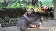 思わず抱きしめてしまった! とっても人懐っこい子象