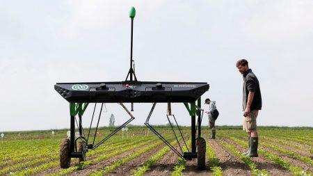 焦点:農業にもAI旋風、除草ロボが巨大農薬市場を一変か
