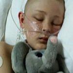 脳死宣告された13歳少年、臓器提供サインに奇跡的に生還!