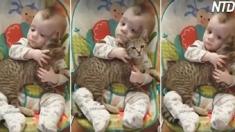 【動画】624グラムで生まれた未熟児、親友はネコ