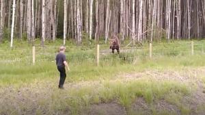 【アニマルレスキュー】ヘラジカの子を救出中の男性を過保護な母鹿が妨害