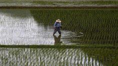 アングル:外国人労働者50万人増へ、深刻化する人手不足 政府の背中押す