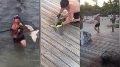 【アニマルレスキュー】囲いに閉じ込められたサメ 危険を顧みず救出した海の男