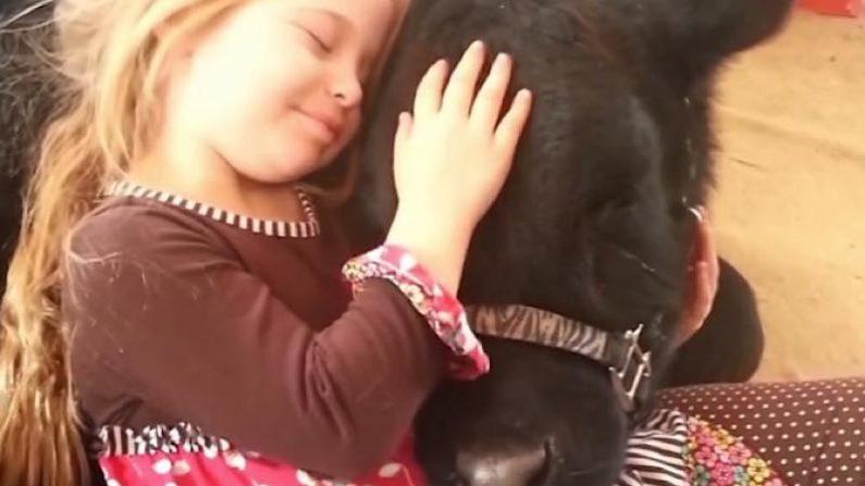【絆】少女と牛の美しい友情