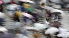 街角景気6月はやや持ち直し、ボーナス好調背景に購入単価上昇目立つ