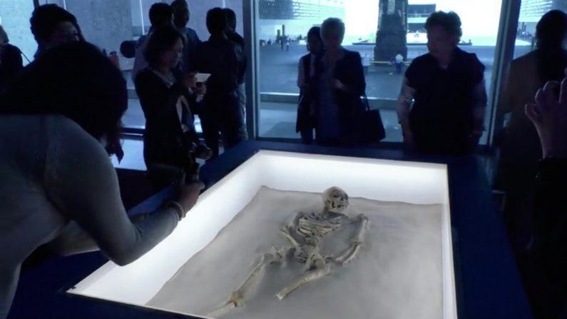 【メキシコ】7000年前のマヤ文明の遺跡 見つかる