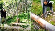 【アウトドア】木の枝とサランラップでつくった神秘的なテント