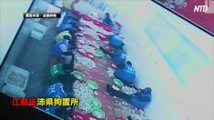 【動画ニュース】中国の拘置所で生産したむきニンニク 海外に輸出