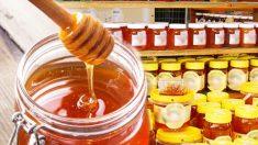 【中国製】まさにパチモノ。有毒化学物質入り『🐝偽ハチミツ』にご注意!