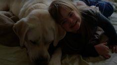 【驚愕】8km離れた自宅から、学校にいる少女の血糖値の異常を知った犬