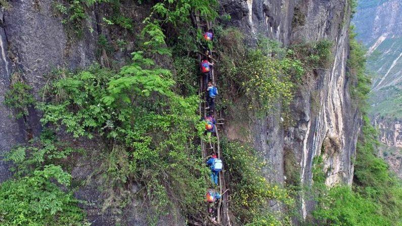 【絶句!命懸けの通学路】800mの絶壁 縄はしごはブドウのツタ製