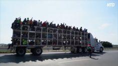 【動画ニュース】5千人規模の移民キャラバン 米国を目指して北上中