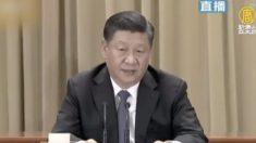 【動画ニュース】習主席談話「中国人は中国人を叩かない」が「武力行使は放棄しない」