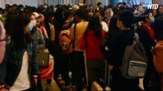 【動画ニュース】香港の病院に中国人殺到 HPVワクチン接種のため