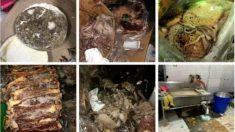 【動画ニュース】四川省の小学校で給食に腐った食材使用 保護者数千人が抗議