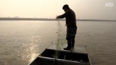 【動画ニュース】中国漁民のチャイナ・ドリーム