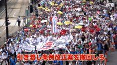 【動画ニュース】香港で103万人デモ 97年以降最大規模
