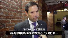 【動画ニュース】米国会上院議員「中共は法輪功迫害をやめるべき」
