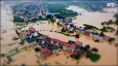 【動画ニュース】中国で深刻な水害 被災地は物資届かず食料不足