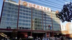 【動画ニュース】北京市民「政府はペスト患者の数をごまかしている」