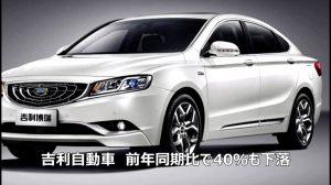 【動画ニュース】中国自動車業界に倒産の波 専門家「政府の補助金政策が主因」