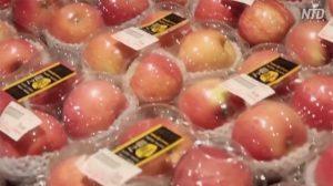 【動画ニュース】豊作貧乏に泣く果物農家 果物価格高騰に怒る都市住民「政府の徴税が原因」
