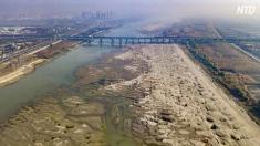 【動画ニュース】長江の川底が露出 水不足は人災か(上)