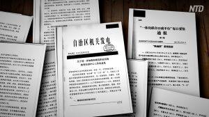 【動画ニュース】「新疆文書」が再度流出「ジェノサイドが進行している」