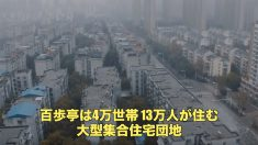 「政府から見放されている」武漢市「百歩亭団地」からの絶望の叫び