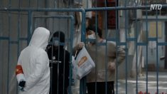 武漢の医師家族「再度大規模感染が発生」 当局「収束に向かっている」