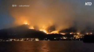 四川省の山火事 消防士ら19人死亡 当局の人命への軽視が招いた悲劇