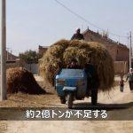 ウイルス蔓延で食糧危機が加速か 中共政府が穀物増産を指示【禁聞】