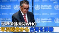 WHOが年次総会から台湾を排除 台湾外交部が抗議