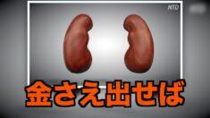 中共軍医が法輪功学習者からの臓器狩りを認める【禁聞】