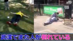 武漢でまた人が倒れている