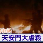 【百年紅禍】31回目の6月4日 天安門大虐殺