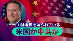 ポンペオ長官「米国か中共か EUは選択を迫られている」