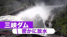 中国南部の洪水は人災か 三峡ダムが秘密裏に放水
