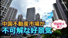 中国不動産市場が不可解な好景気 専門家「政府・銀行・開発業者が三大受益者」【禁聞】