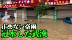止まない豪雨 長江中下流域に大規模な洪水の恐れ【禁聞】