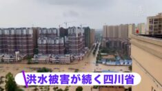 洪水被害が続く中国 四川や山東で甚大な被害【禁聞】