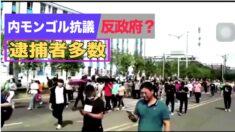 内モンゴルの抗議活動は「反政府運動」?逮捕者多数【禁聞】
