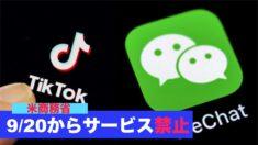 20日からTikTokとWeChatのサービス禁止=米商務省