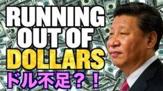 中国のドルは底を突いた?【チャイナ・アンセンサード】