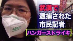 武漢で逮捕された市民ジャーナリスト ハンガーストライキで抗議