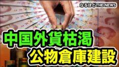 【なるほどTHE NEWS】中国外貨準備高枯渇  国内物資を公物倉庫に集合