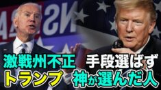 米大統領選2020 はばからない不正投票 潜む闇の勢力  【なるほどTHE NEWS】